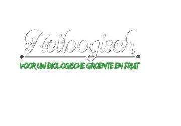 Heiloogisch